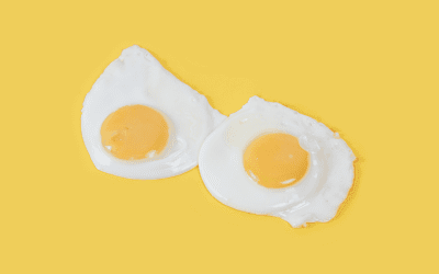 No more egg shaming; cardiovascular risks unfounded