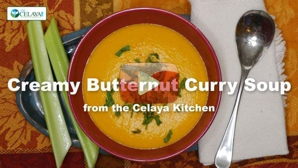 Creamy butternut curry soup